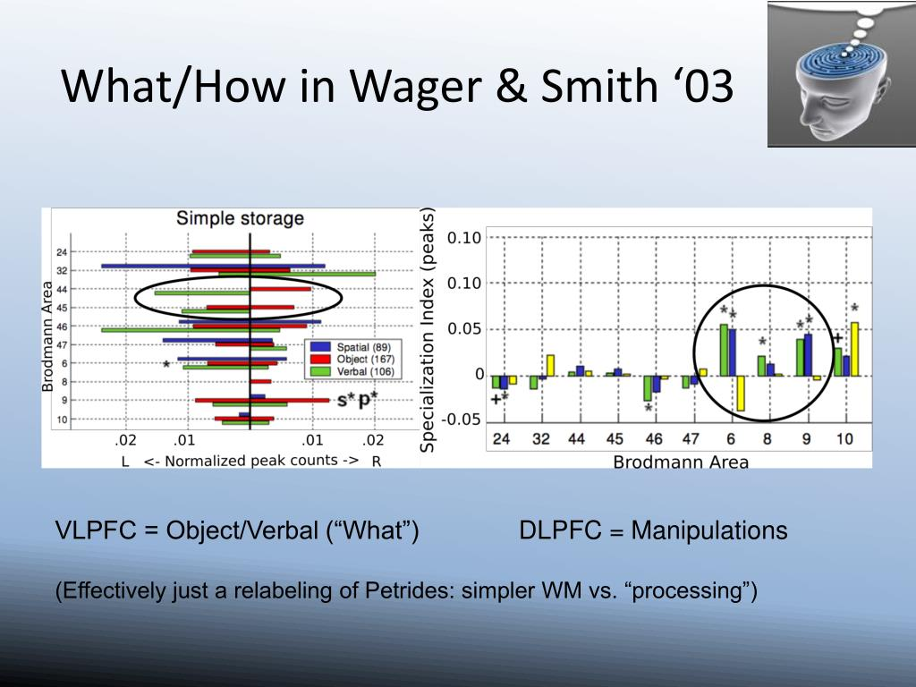 What/How in Wager & Smith '03