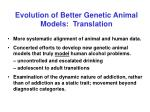 evolution of better genetic animal models translation