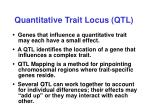 quantitative trait locus qtl