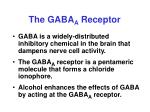 the gaba a receptor