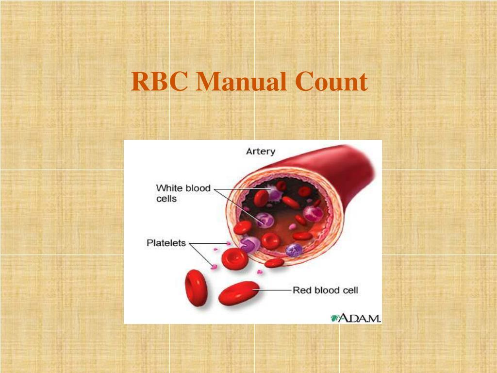 RBC Manual Count