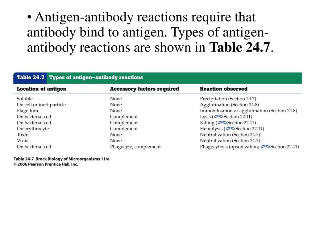 Antigen-antibody reactions require that antibody bind to antigen. Types of antigen-antibody reactions are shown in