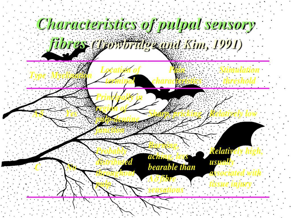 Characteristics of pulpal sensory fibres
