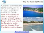 why you should visit noosa6