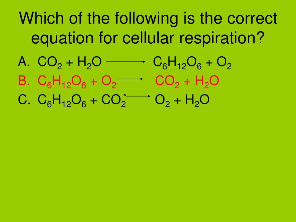 PPT - Review for Photosynthesis and Cellular Respiration ...