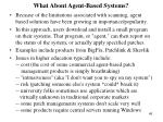 what about agent based systems