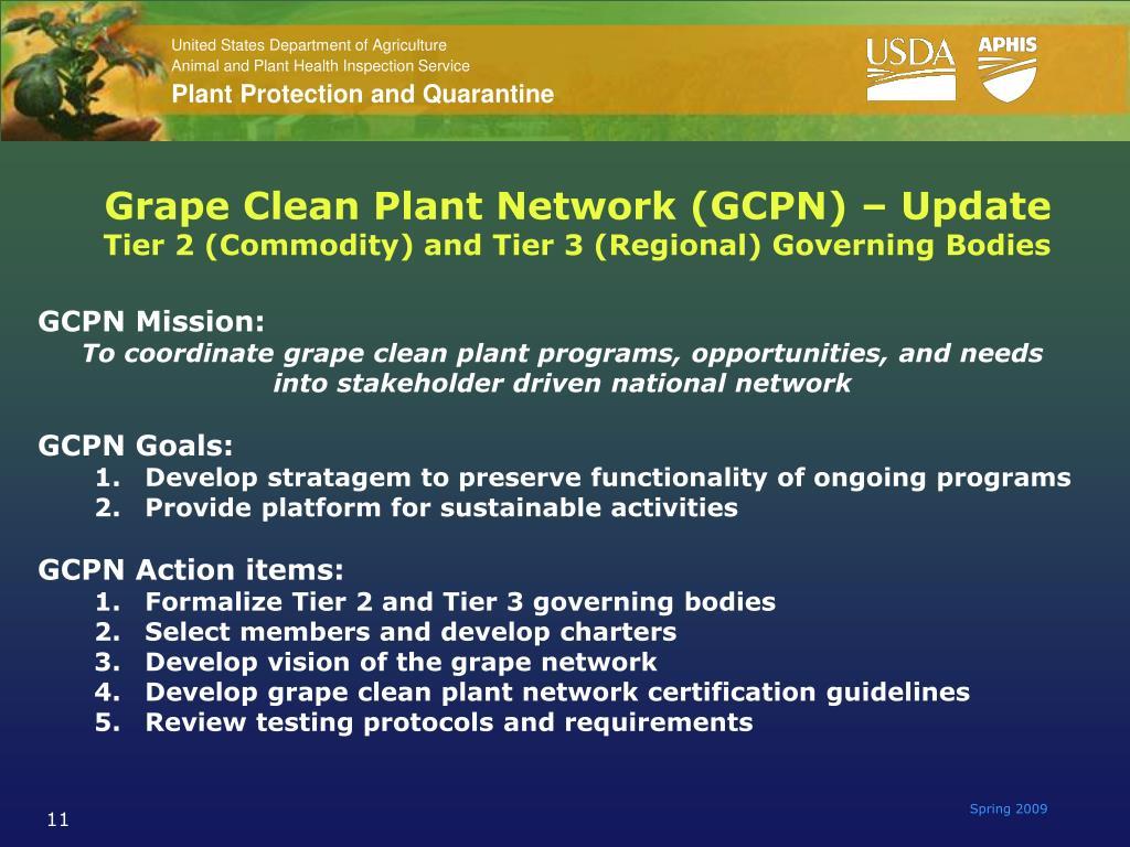 Grape Clean Plant Network (GCPN) – Update