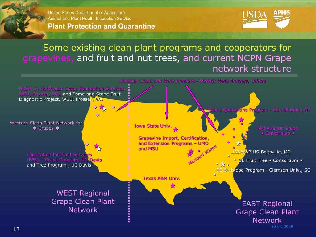 Some existing clean plant programs and cooperators for