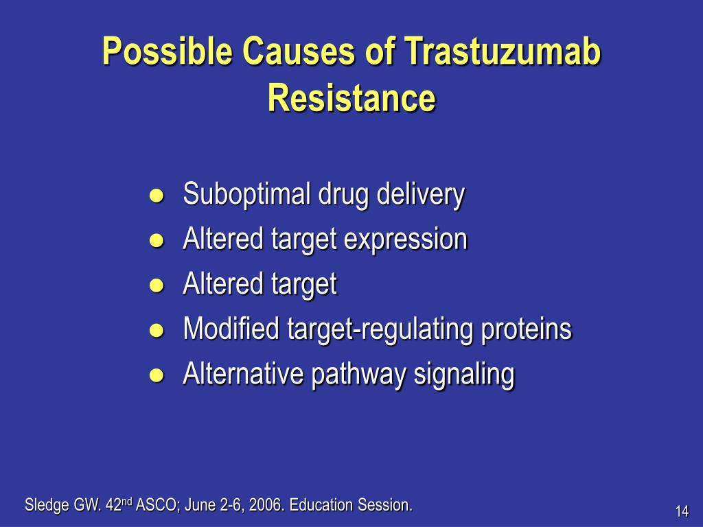 Possible Causes of Trastuzumab Resistance