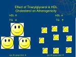 effect of triacylglycerol hdl cholesterol on atherogenicity