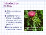 introduction milk thistle