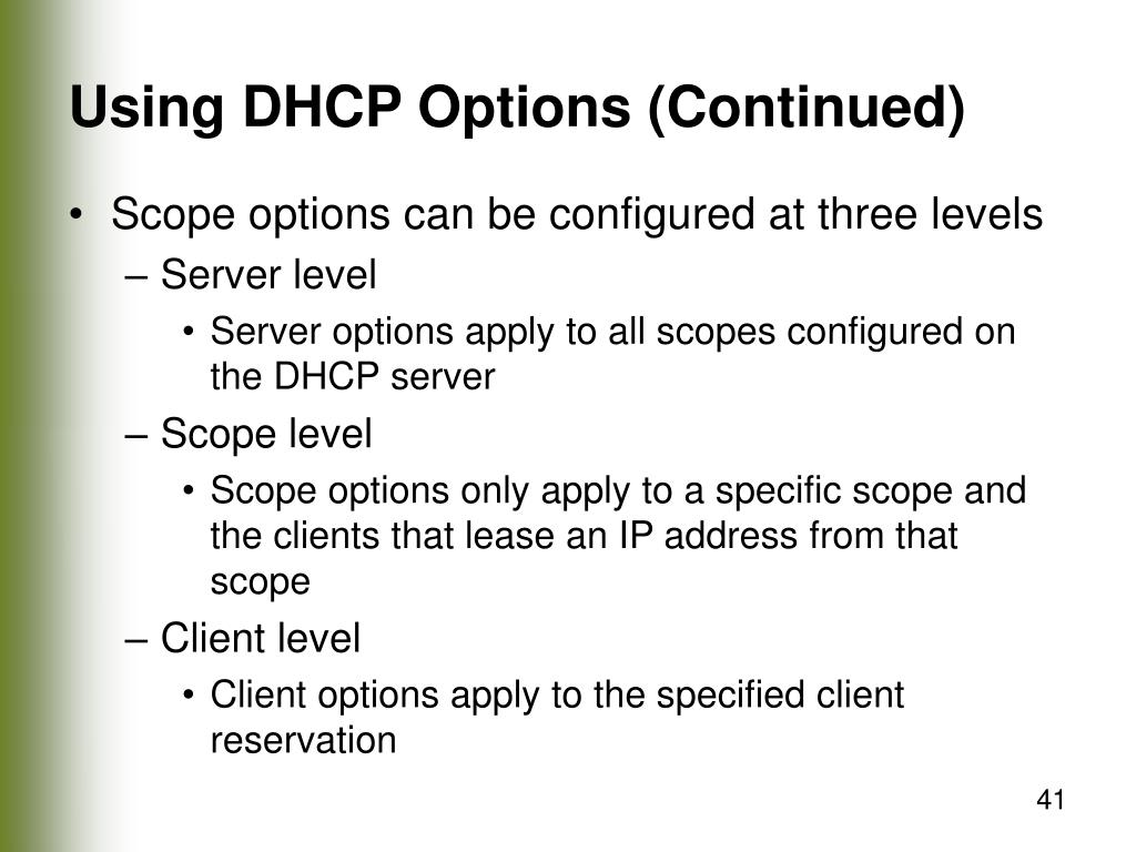 Using DHCP Options (Continued)