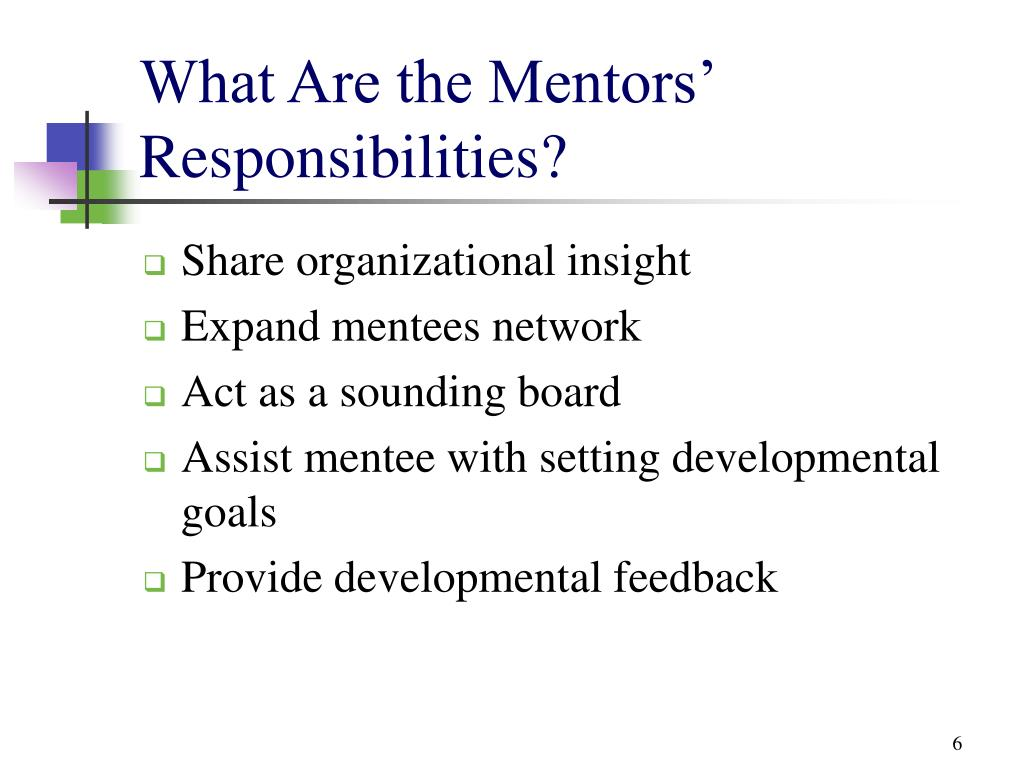 What Are the Mentors' Responsibilities?