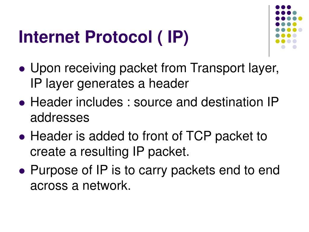 Internet Protocol ( IP)
