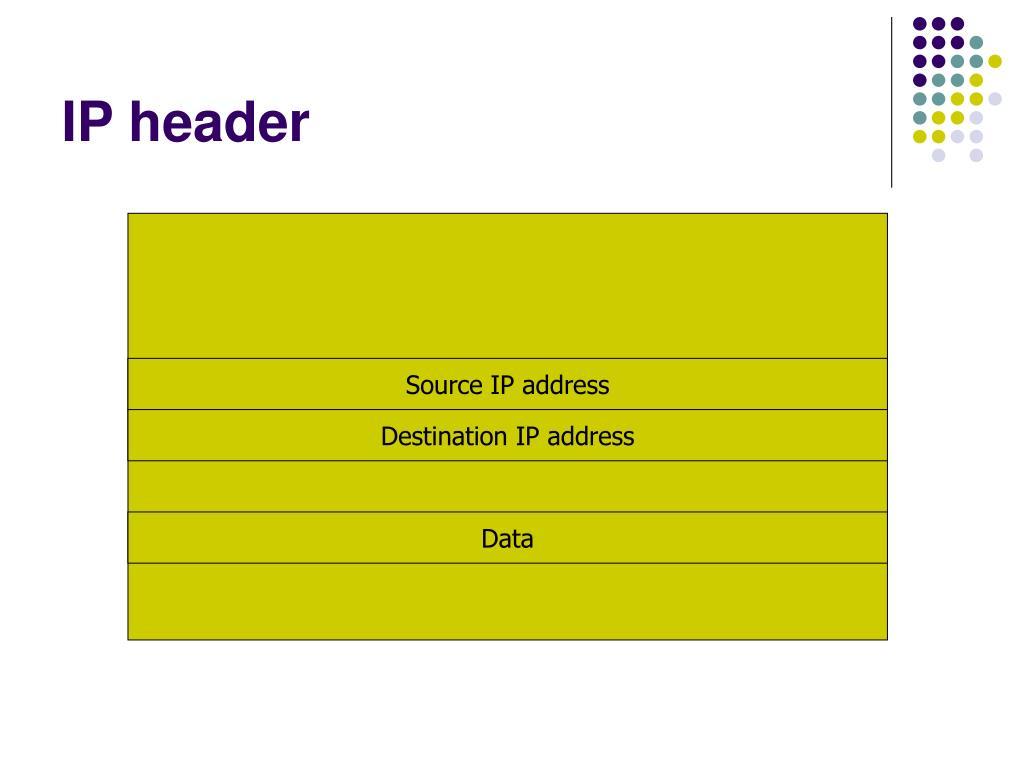 IP header