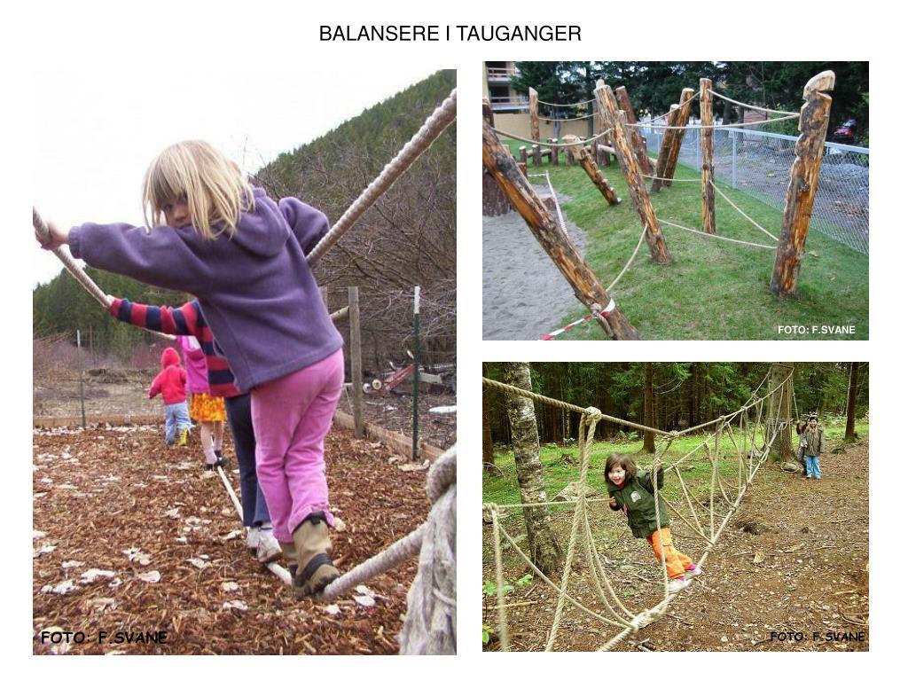BALANSERE I TAUGANGER