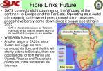 fibre links future