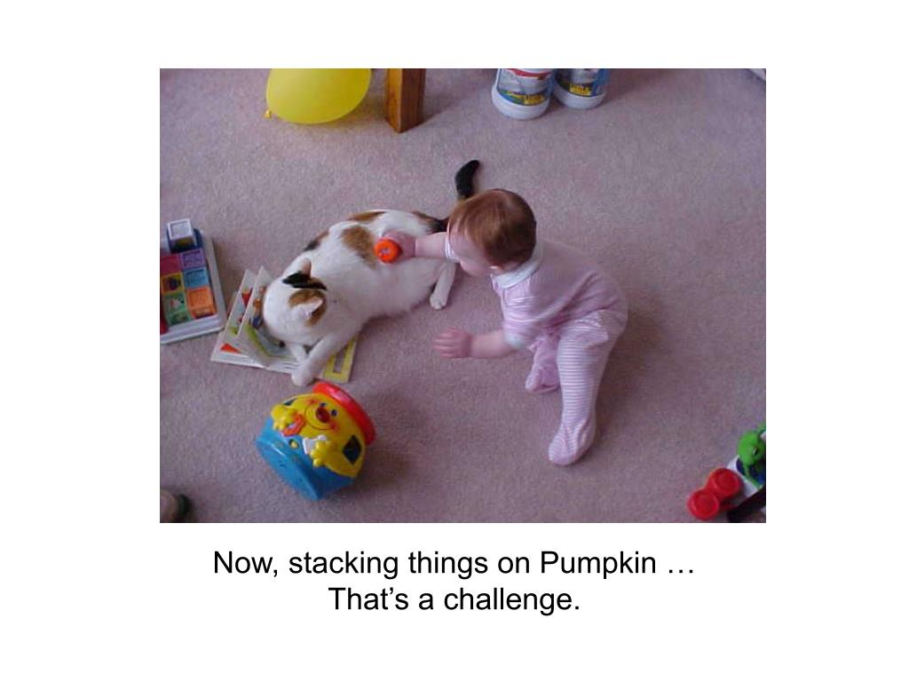 Now, stacking things on Pumpkin …