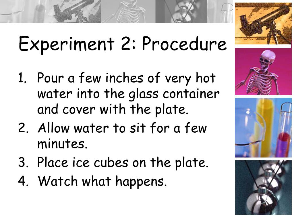 Experiment 2: Procedure