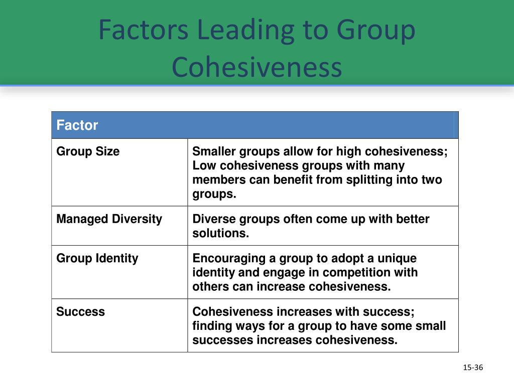 factors of group cohesiveness