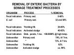 removal of enteric bacteria by sewage treatment processes