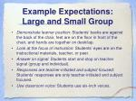example expectations large and small group