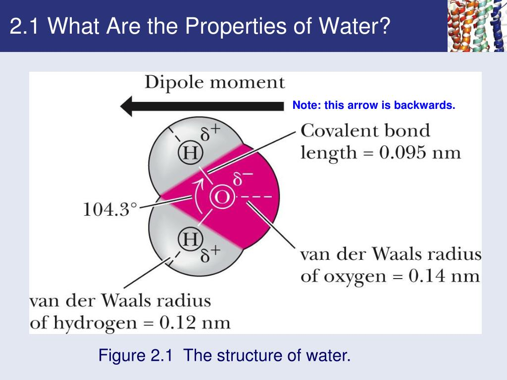 2.1 What Are the Properties of Water?