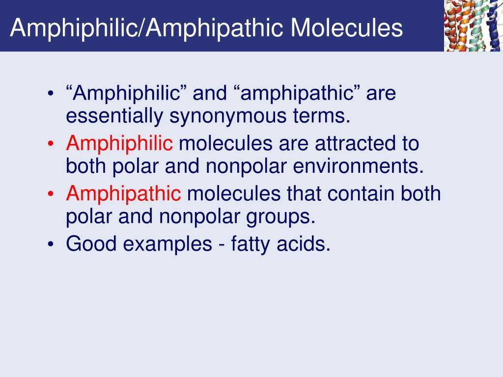 Amphiphilic/Amphipathic Molecules