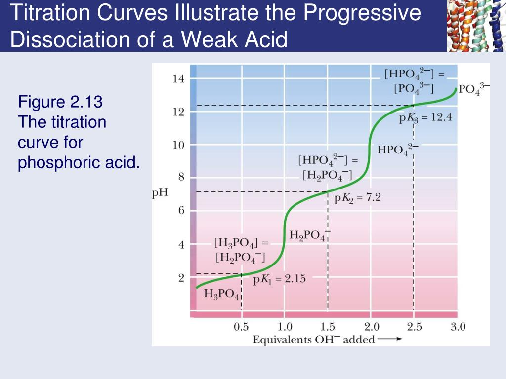 Titration Curves Illustrate the Progressive Dissociation of a Weak Acid