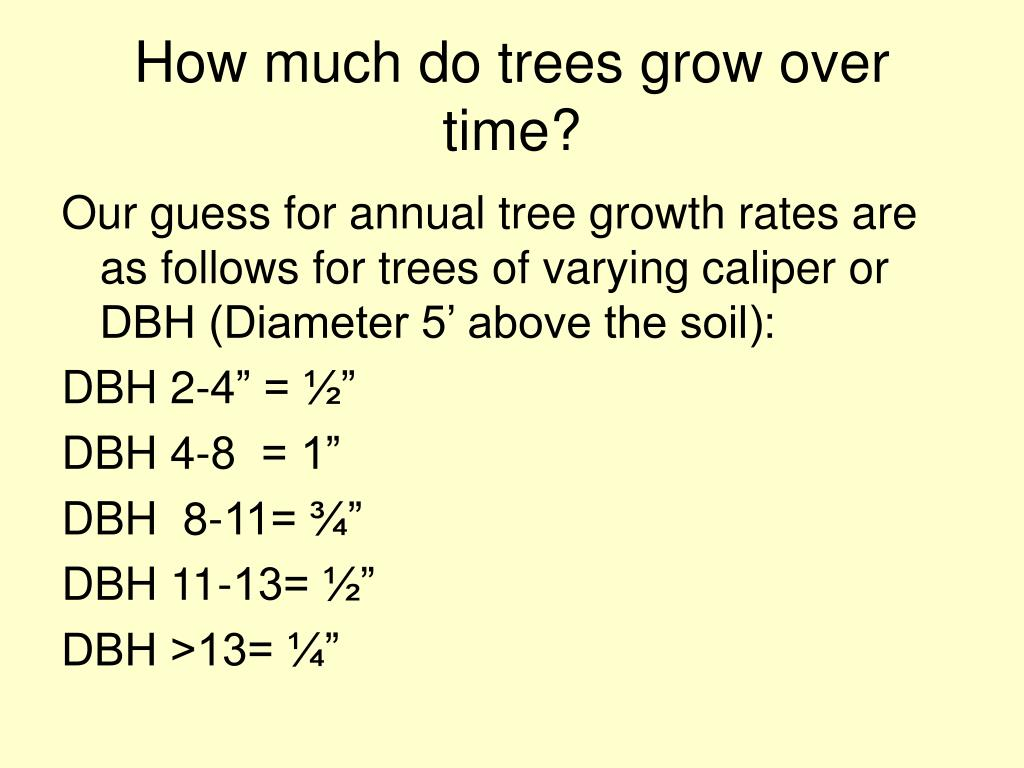 How much do trees grow over time?
