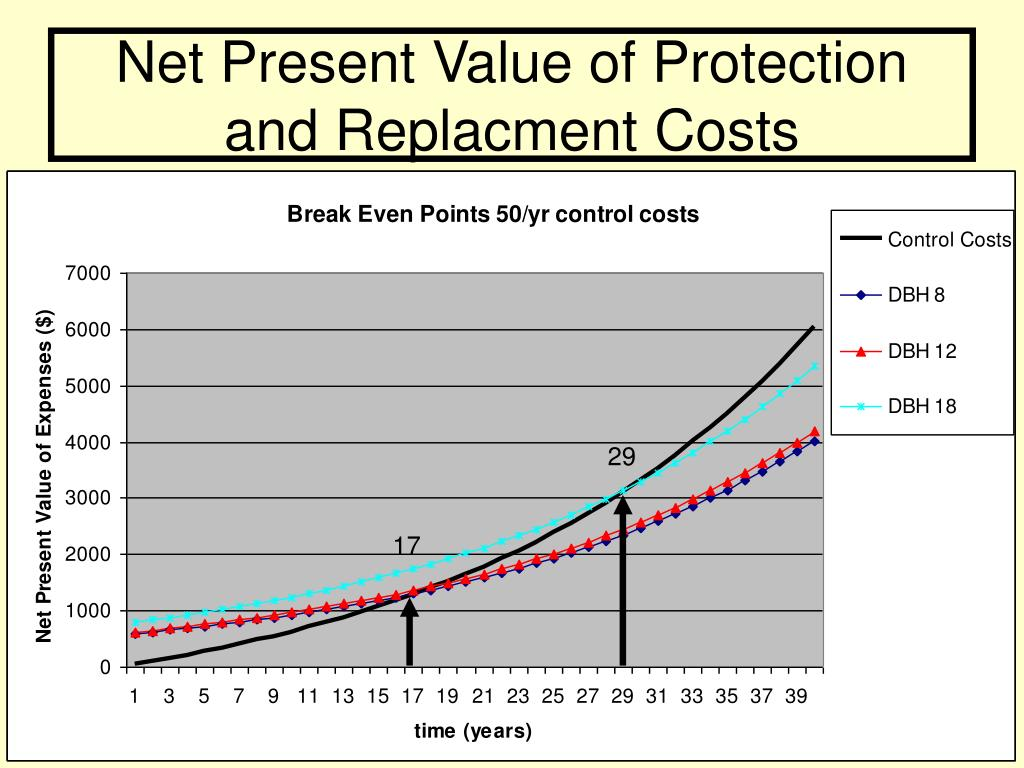 Net Present Value of Protection and Replacment Costs