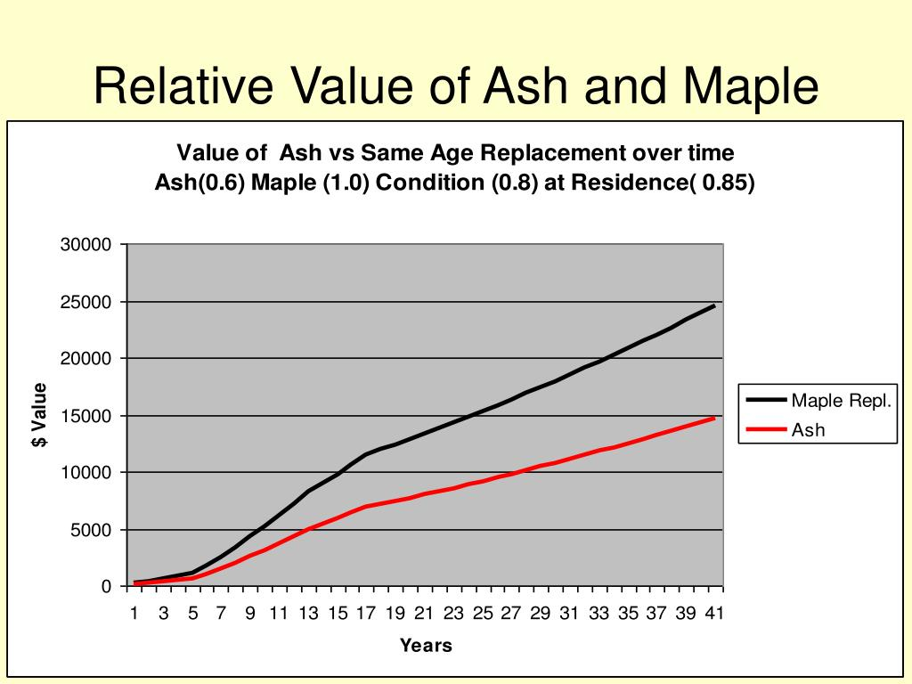 Relative Value of Ash and Maple