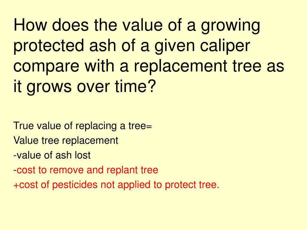How does the value of a growing protected ash of a given caliper compare with a replacement tree as it grows over time?