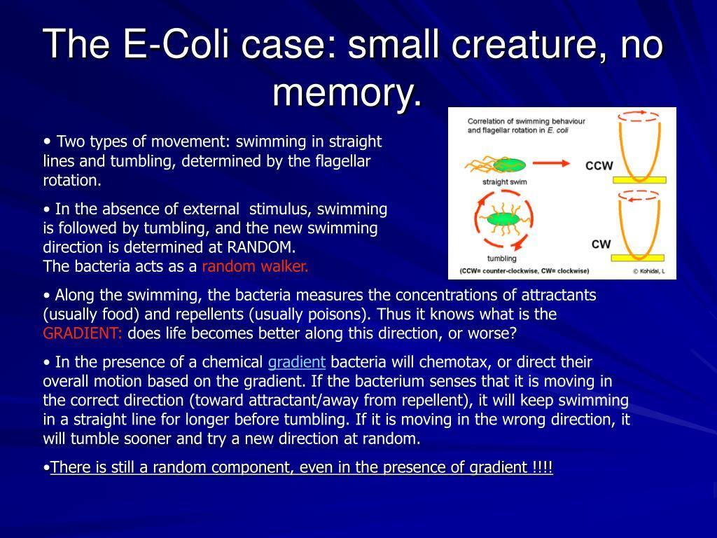 The E-Coli case: small creature, no memory.