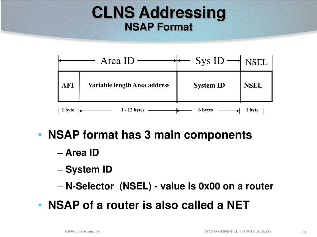 CLNS Addressing