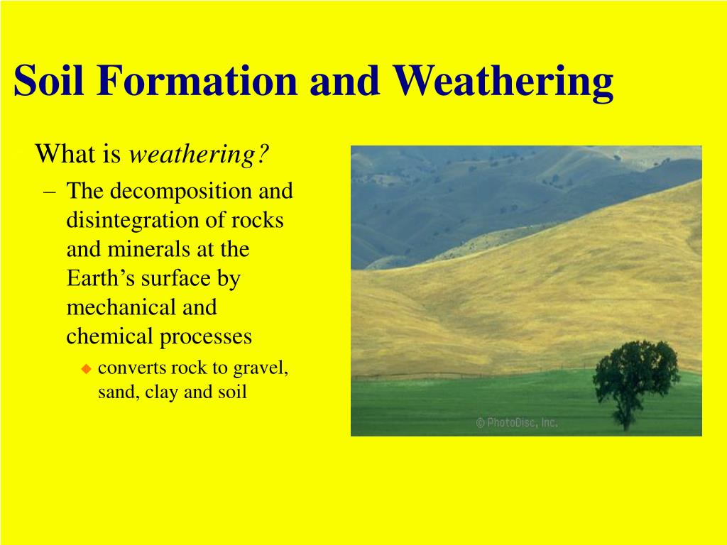 Ppt weathering and soil resources powerpoint for Soil formation