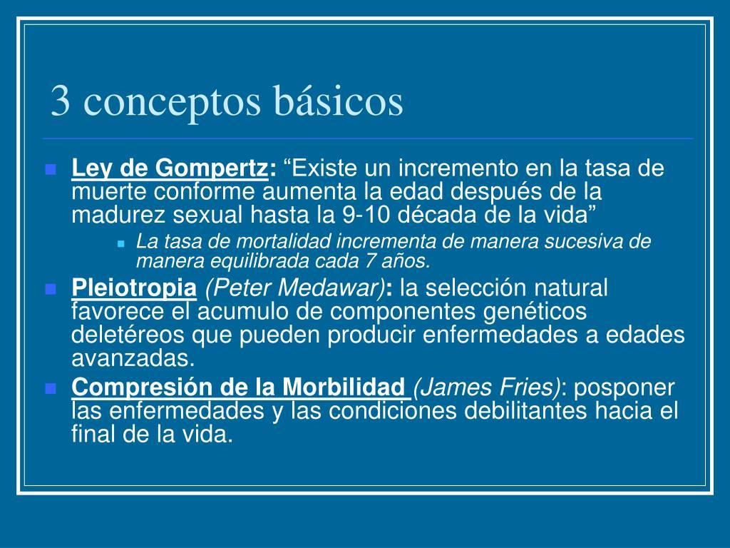 3 conceptos básicos