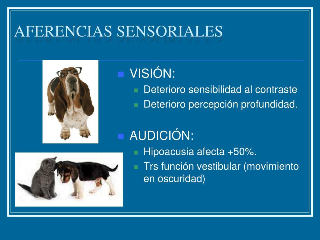 Aferencias sensoriales