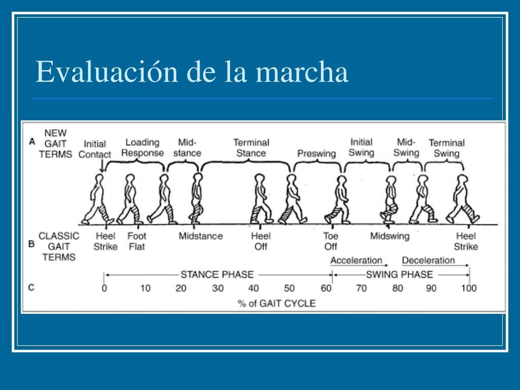 Evaluación de la marcha