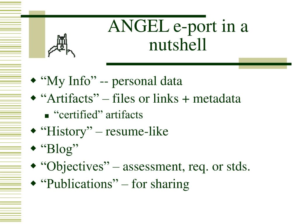 ANGEL e-port in a nutshell