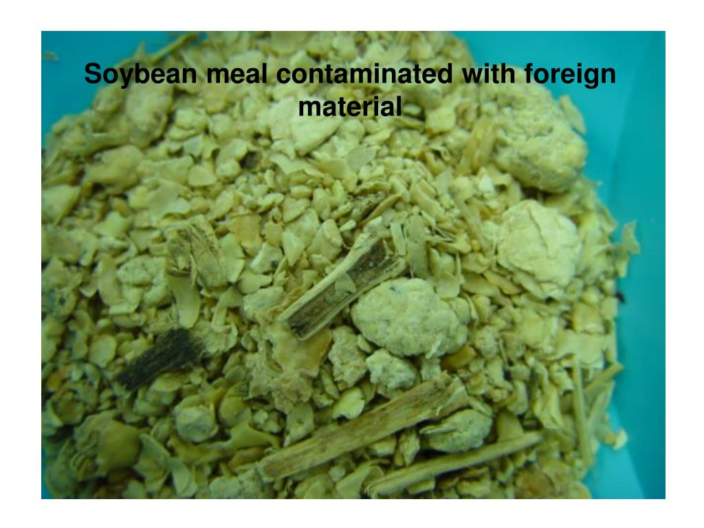 Soybean meal contaminated with foreign material