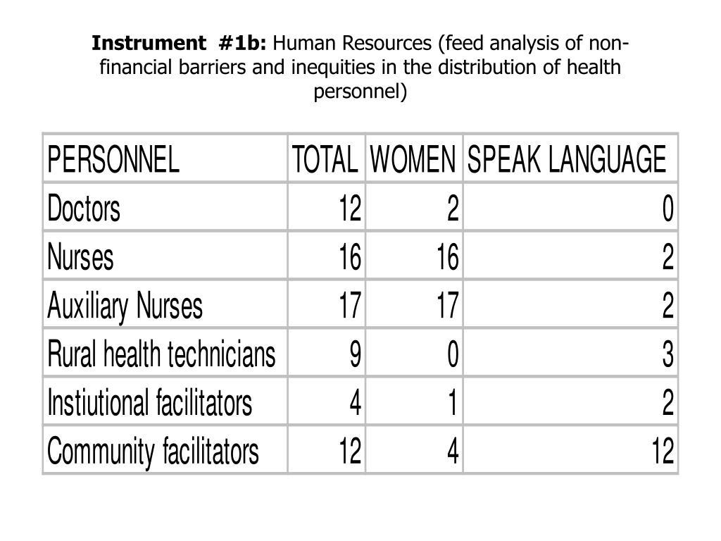 Instrument  #1b: