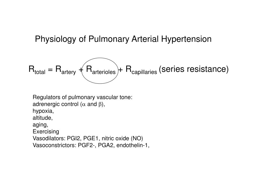 Physiology of Pulmonary Arterial Hypertension