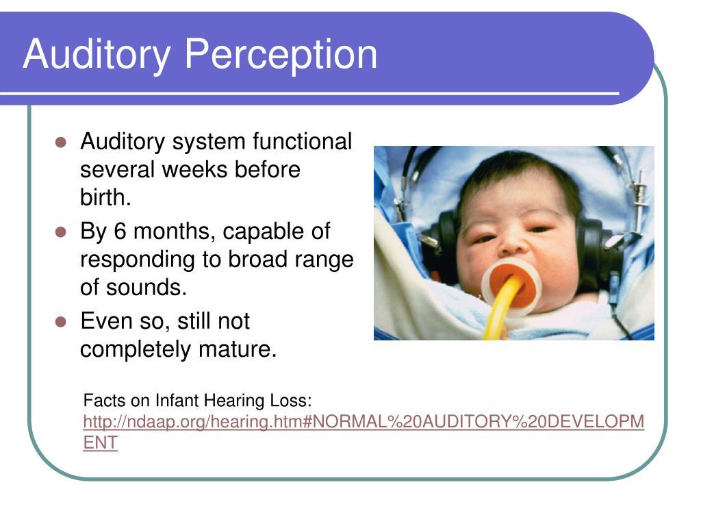 Auditory Perception