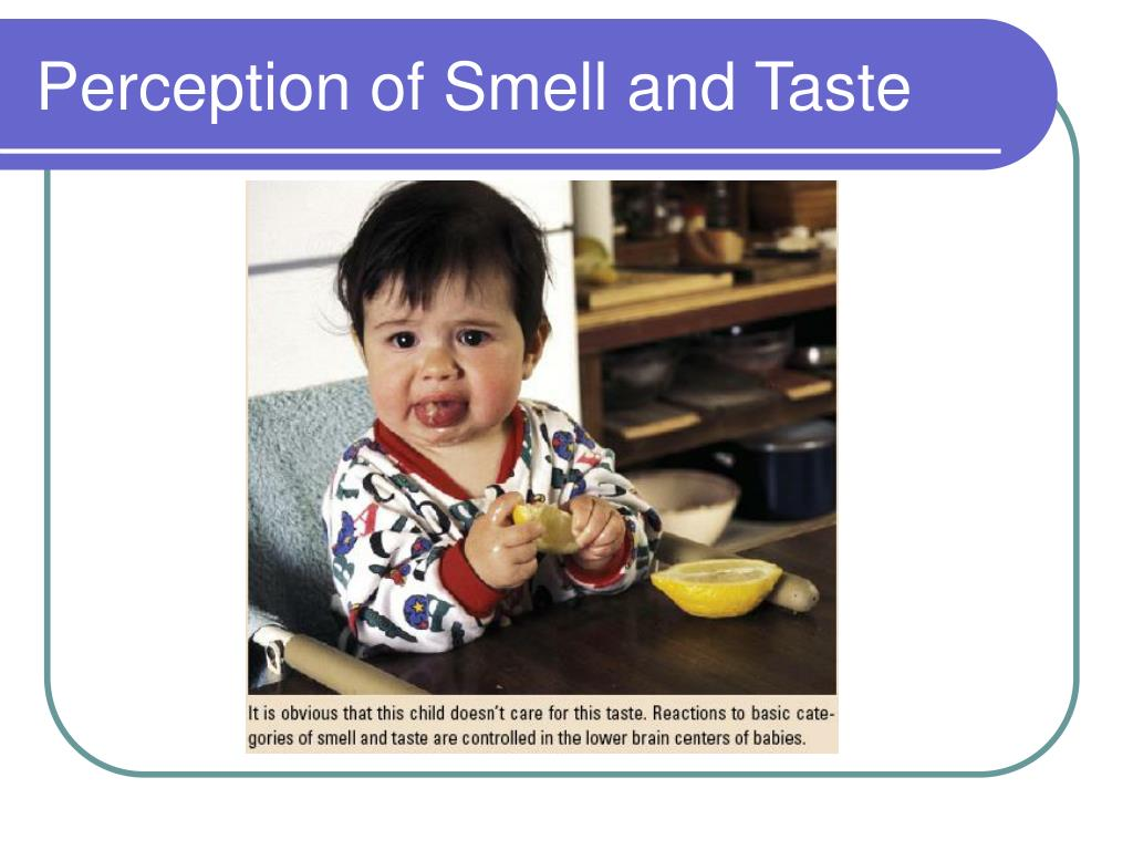 Perception of Smell and Taste