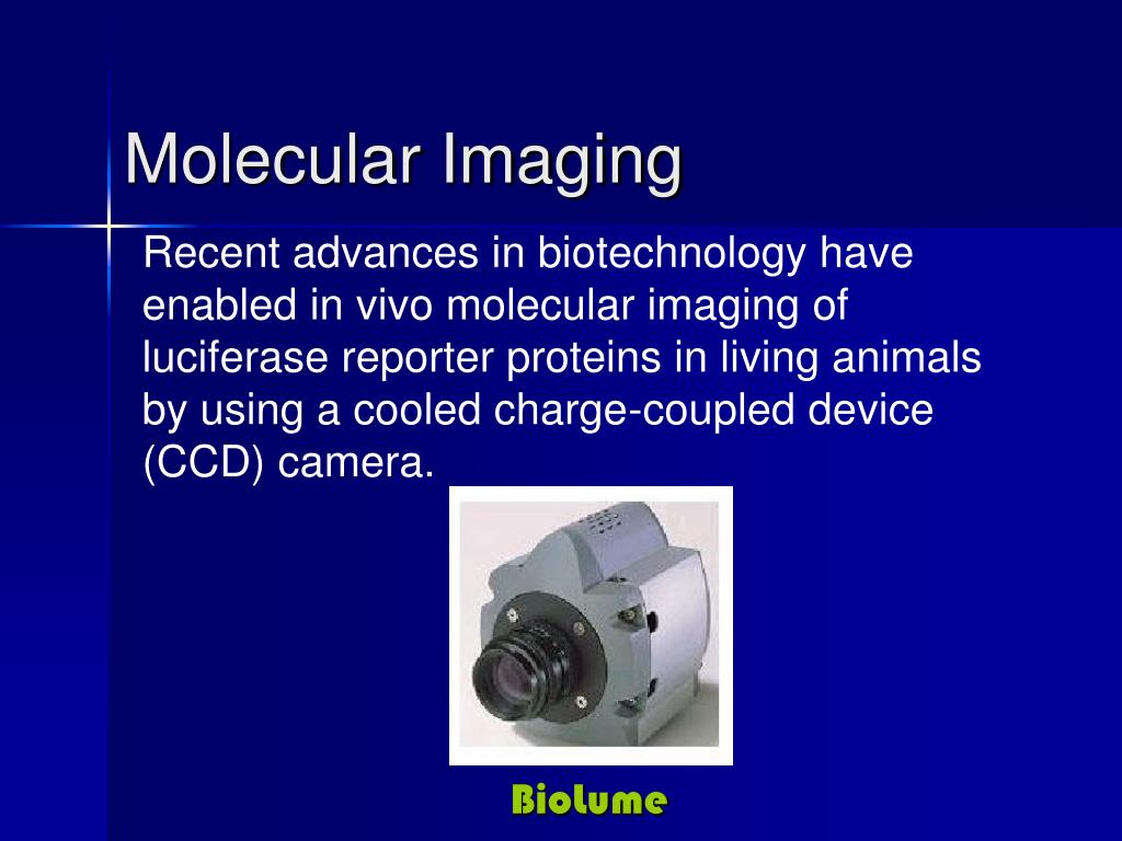 Recent advances in biotechnology have enabled in vivo molecular imaging of luciferase reporter proteins in living animals by using a cooled charge-coupled device (CCD) camera.