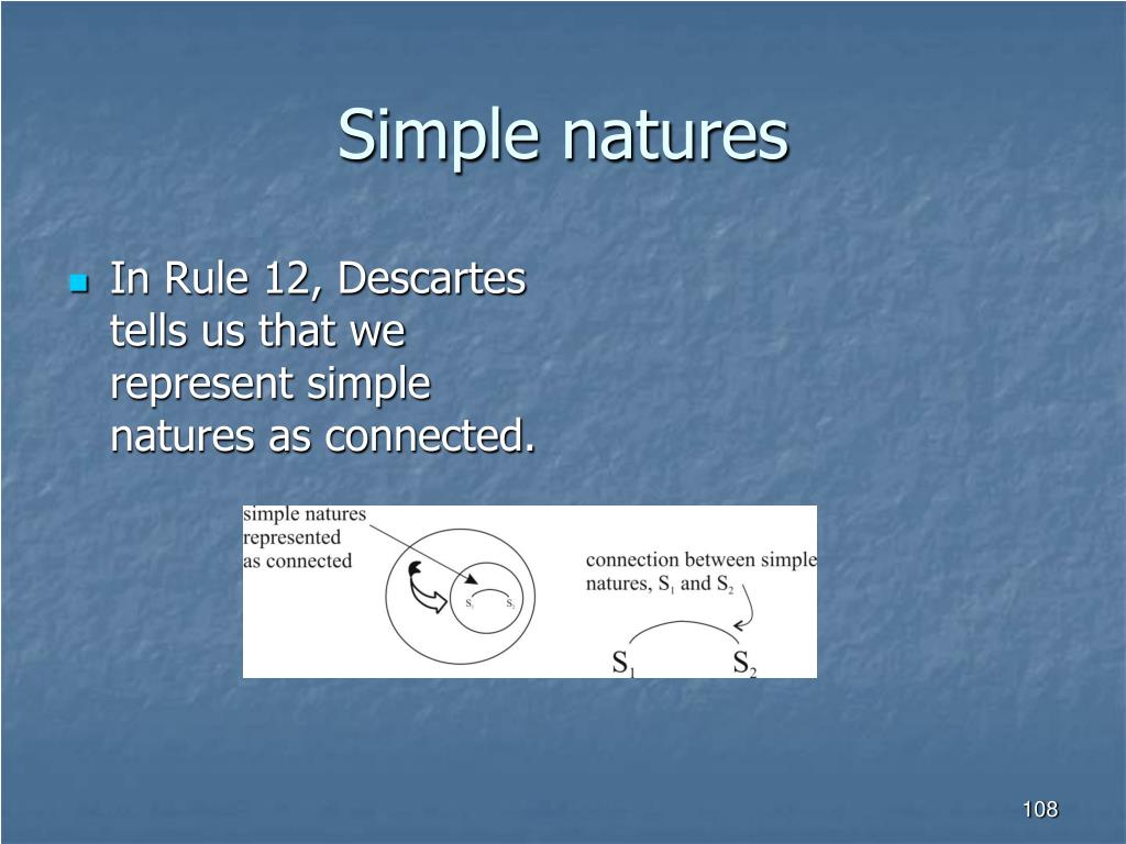 Simple natures