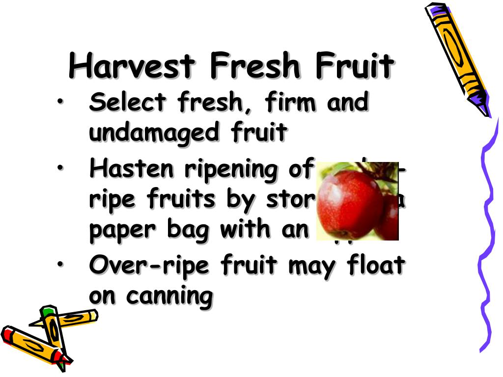 Harvest Fresh Fruit