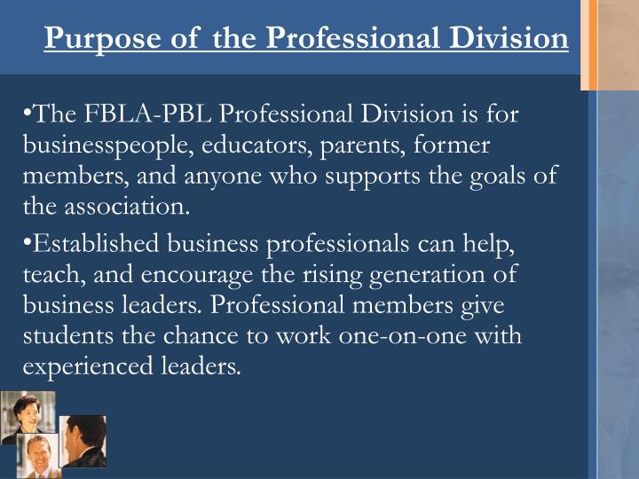 Purpose of the professional division