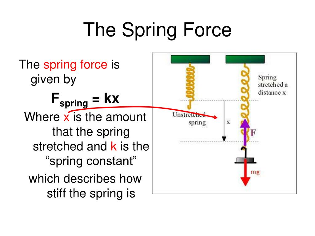 The Spring Force